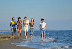 Grupo de amigos que se divierten que camina abajo de la playa en la puesta del sol Fotos de archivo libres de regalías
