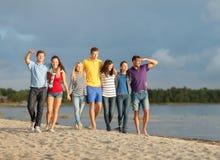 Grupo de amigos que têm o divertimento na praia Fotografia de Stock
