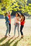 Grupo de amigos que têm o divertimento no parque imagens de stock