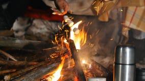 Grupo de amigos que têm uma boa estadia nas madeiras Fogueira na noite da floresta do inverno Fritando o marshmallow filme