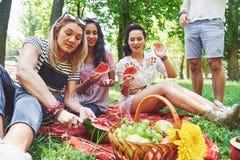 Grupo de amigos que tienen comida campestre en un parque en un día soleado - gente que cuelga hacia fuera, divirtiéndose mientras Imagen de archivo