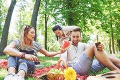 Grupo de amigos que tienen comida campestre en un parque en un día soleado - gente que cuelga hacia fuera, divirtiéndose mientras Imagen de archivo libre de regalías
