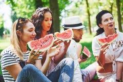 Grupo de amigos que tienen comida campestre en un parque en un día soleado - gente que cuelga hacia fuera, divirtiéndose mientras Fotografía de archivo libre de regalías