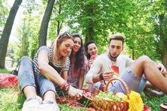 Grupo de amigos que tienen comida campestre en un parque en un día soleado - gente que cuelga hacia fuera, divirtiéndose mientras Imágenes de archivo libres de regalías