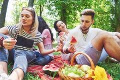 Grupo de amigos que tienen comida campestre en un parque en un día soleado - gente que cuelga hacia fuera, divirtiéndose mientras Fotos de archivo
