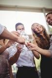 Grupo de amigos que tuestan los vidrios de champán Imagen de archivo