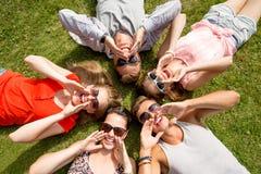Grupo de amigos sonrientes que mienten en hierba al aire libre Foto de archivo