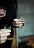 Grupo de amigos una tostada a las alegrías del brandy del ciruelo Fotos de archivo libres de regalías