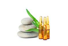 Grupo de ampollas, de piedras y de áloe de la medicina Fotografía de archivo libre de regalías
