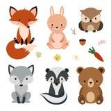 Grupo de animais bonitos da floresta isolados no fundo branco Foto de Stock