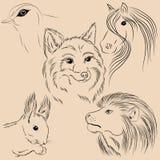 Grupo de animais das ilustrações selvagem Forest Monochrome Fotos de Stock Royalty Free