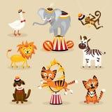 Grupo de animais de circo bonitos Imagens de Stock Royalty Free