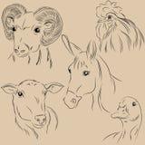 Grupo de animais de estimação das ilustrações Exploração agrícola agronomy monocromático Fotos de Stock Royalty Free