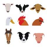 Grupo de animais de exploração agrícola e vetores e ícones dos animais de estimação Imagem de Stock