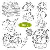 Grupo de animais de exploração agrícola bonitos e de objetos, coelhos da família do vetor Imagem de Stock