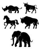 Grupo de animais do poder imagem de stock