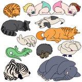 Grupo de animais e de bebê do sono Foto de Stock Royalty Free