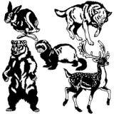 Grupo de animais europeus selvagens ilustração do vetor