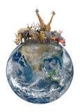 Grupo de animal de África com terra do planeta Fotografia de Stock Royalty Free