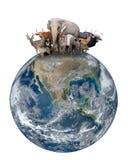 Grupo de animal de Ásia com terra do planeta Fotos de Stock Royalty Free