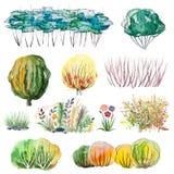 Grupo de arbustos e de arbustos da aquarela Imagens de Stock Royalty Free