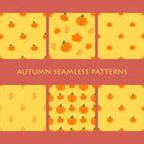 Grupo de Autumn Seamless Patterns Maçãs alaranjadas, folhas, abóboras ilustração stock