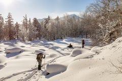 Grupo de backpackers jovenes de los esquiadores en paisaje nevoso del bosque Imagen de archivo