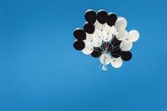 Grupo de balões preto e branco altos no céu Céu azul Cloudless imagem de stock royalty free