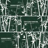 Grupo de bambu da floresta nave Japão ou China Árvore da planta verde com folhas Floresta úmida em Ásia ilustração do vetor