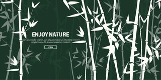 Grupo de bambu da floresta nave Japão ou China Árvore da planta verde com folhas Floresta úmida em Ásia ilustração stock