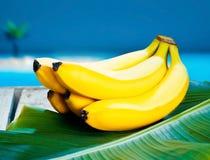 Grupo de bananas amarelas maduras Fotos de Stock Royalty Free