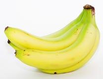 Grupo de bananas verdes imagem de stock royalty free