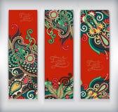 Grupo de bandeira decorativa do molde da flor, cartão, ilustração royalty free