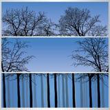 Grupo de bandeiras da floresta Foto de Stock