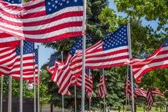 Grupo de banderas americanas que soplan en el viento afuera en el parque al aire libre Foto de archivo libre de regalías