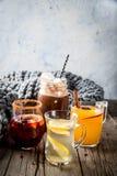 Grupo de 4 bebidas do outono Fotos de Stock