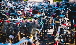 Grupo de bicicletas em facilidades de estacionamento da bicicleta Fotografia de Stock Royalty Free