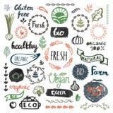 Grupo de bio tirado mão, orgânico, logotipos do produto do eco, crachás, etiquetas ilustração stock