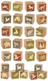 Grupo de bloques de madera Fotografía de archivo libre de regalías