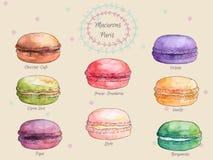 Grupo de bolinhos de amêndoa franceses do gosto diferente da aquarela, coleção de macarons franceses coloridos da variação Imagens de Stock Royalty Free