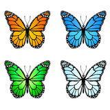 Grupo de borboletas coloridas Imagem de Stock