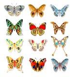 Grupo de borboletas coloridas em um fundo branco Fotografia de Stock Royalty Free