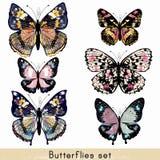 Grupo de borboletas coloridas realísticas do vetor para o projeto Foto de Stock Royalty Free