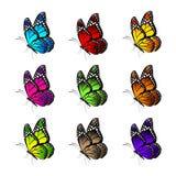 Grupo de borboletas coloridas realísticas isoladas para a mola Foto de Stock Royalty Free