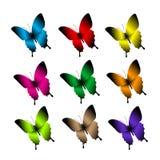 Grupo de borboletas coloridas realísticas isoladas para a mola Foto de Stock