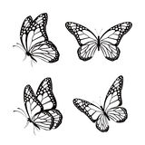 Grupo de borboletas coloridas realísticas isoladas para a mola Imagem de Stock Royalty Free