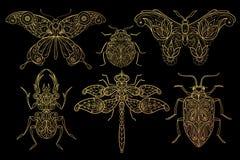 Grupo de borboletas dos insetos, libélulas, besouros ilustração royalty free