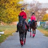 Grupo de caballo de montar a caballo de los adolescentes en parque del otoño Fotografía de archivo libre de regalías