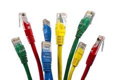 Grupo de cabos brilhantemente coloridos da rede Ethernet Fotografia de Stock