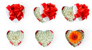 Grupo de caixas de presente dadas forma coração da proposta de união Fotos de Stock Royalty Free